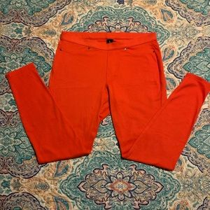 🌺HUE Bright Coral Jeggings🌺